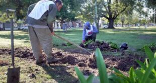 Avanzan los trabajos de puesta a punto en los espacios verdes