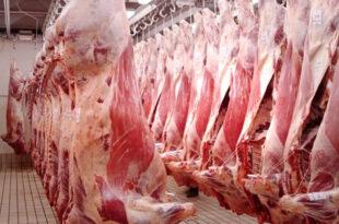 exportacion-de-carne
