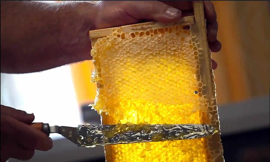 miel en colón