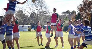 amistoso rugby