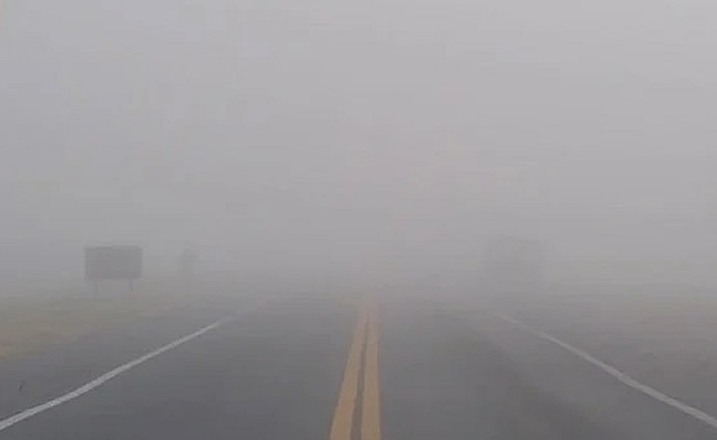 niebla-en-la-ruta
