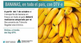 banana DTV